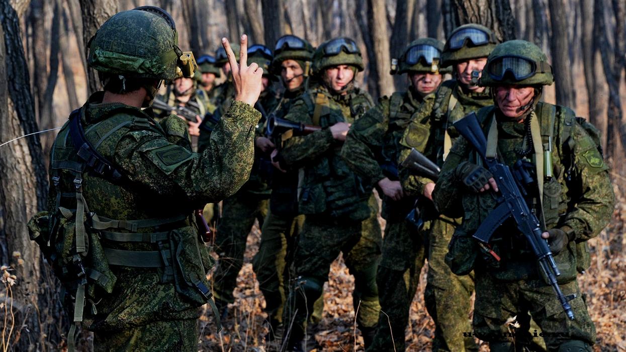армия россии лес
