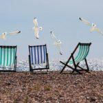 отпуск шезлонг чайка