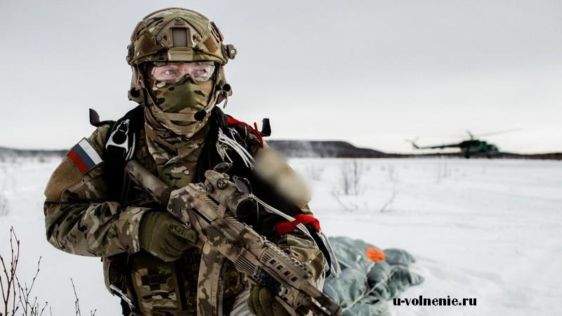 зима солдат оружие